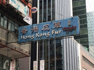 There seemed to be a lot of fur shops. Fun fact: 'fur' in Cantonese translates literally to 'skin grass'.