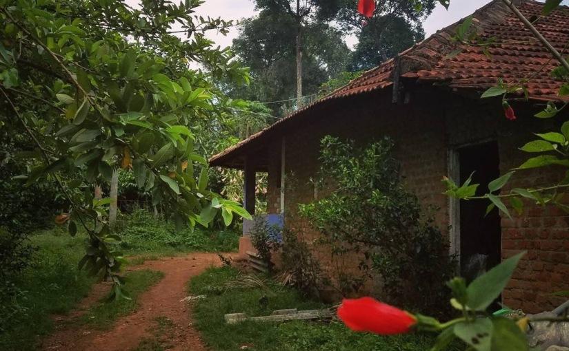India Part 4 – Misadventures inCoorg
