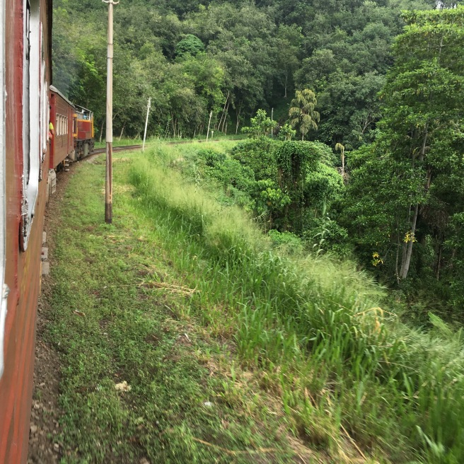 The train ride up to Kandy.