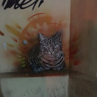 Even the graffiti displays their love of Cats.