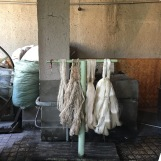The skeins of raw silk are washed twice in bicarbonate prior to dying.