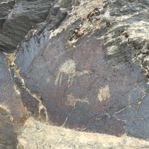 The petroglyphs were pretty cool, though. Check out the one humped dromedary.
