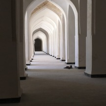 Inside the prayer halls. They have empty clay vessels inside the walls to reflect back the Imam's voice. Amazing.