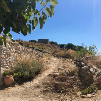 A windy mountain path leading up to olive groves.